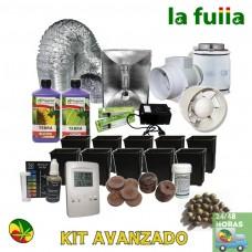 Kit Agrolite 250W Crec/Flo