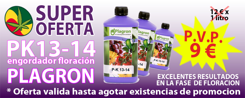 oferta six pack grotek